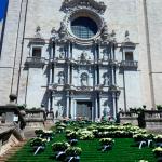 aliances de boda a catalunya